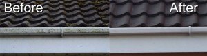 Cleaning of soffits, facias and gutters